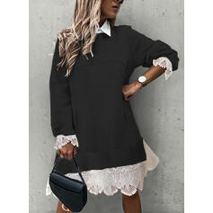 Lace Long Sleeves Shift Knee Length Casual Sweater Dresses